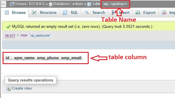 How to insert data in WordPress database table?